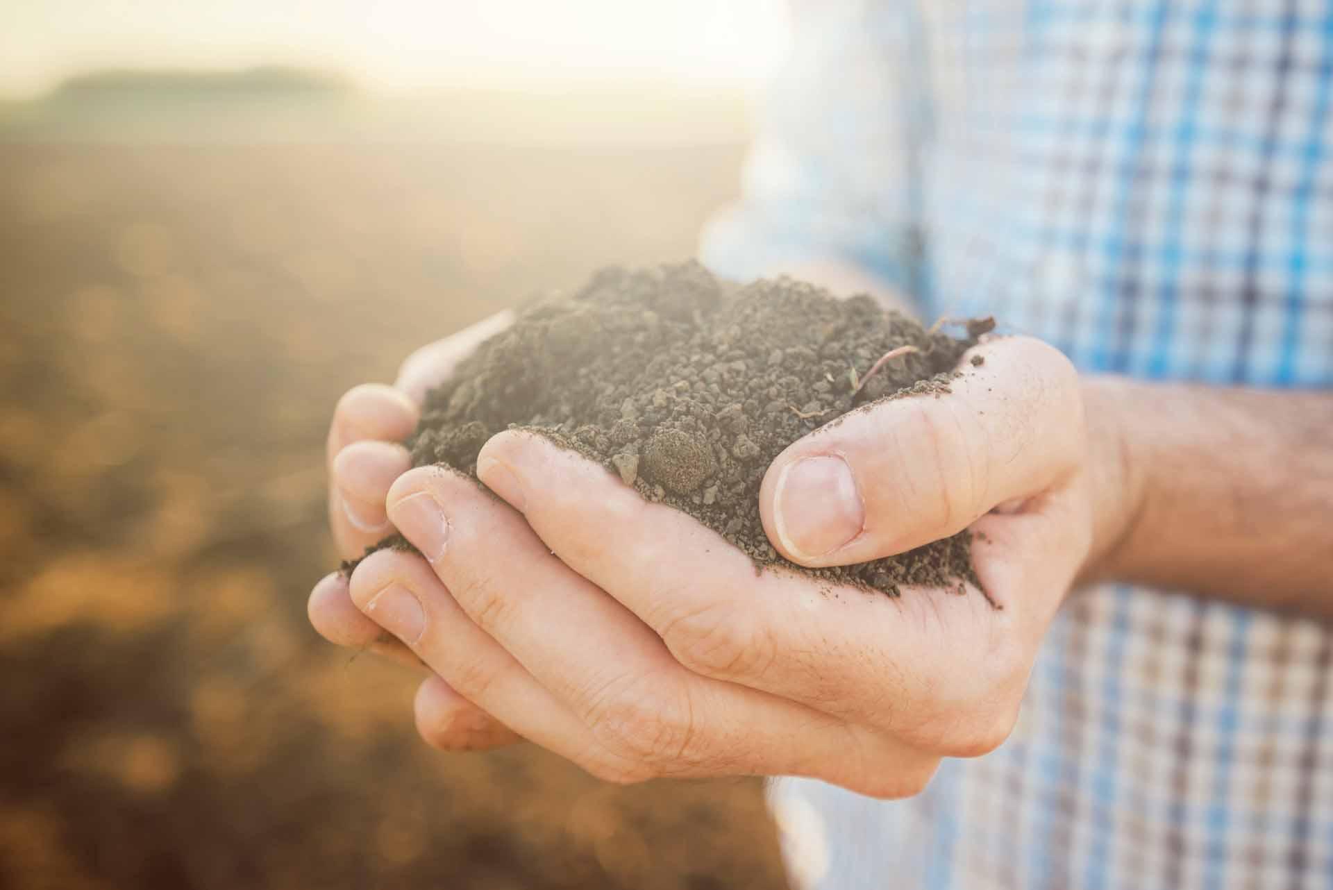 как определить тип почвы