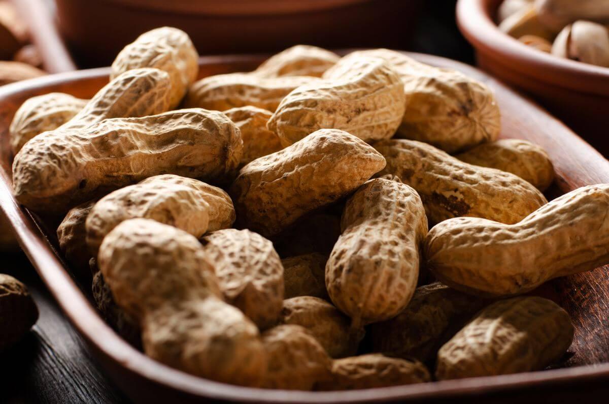 арахис на даче