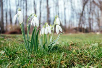 календарь народных примет с 15 по 28 марта